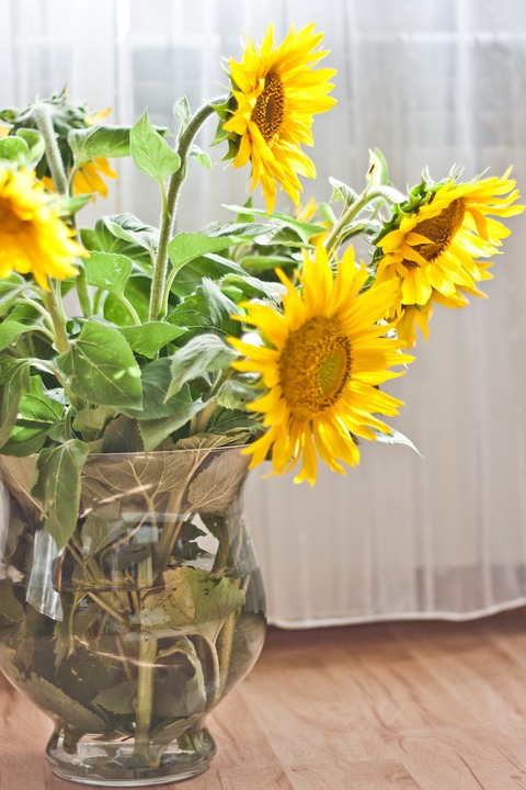 Sunflower, Vase, Yellow, Flower, Flowers