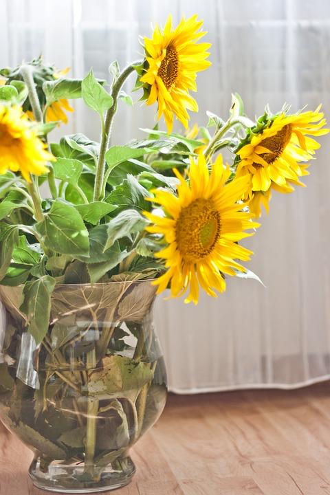Sunflower, Vase, Yellow, Flower, Flowers