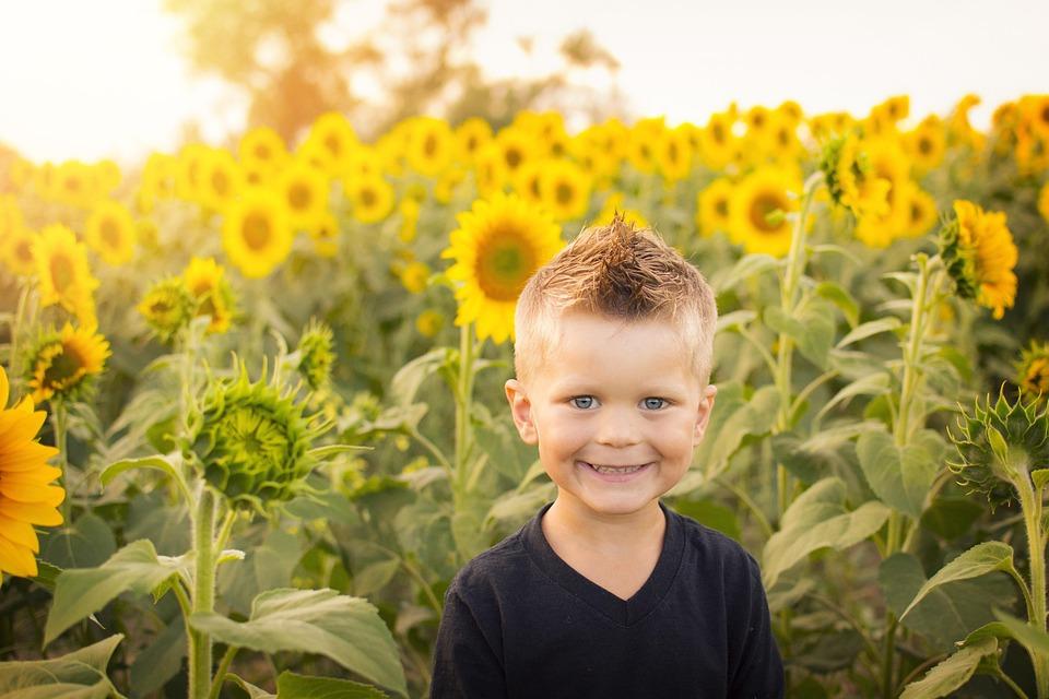 Child, Sun, Sunflowers, Field, Happy, Kid, Childhood