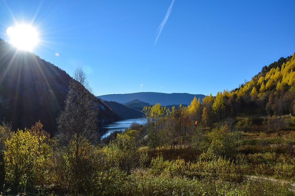 Fall, Autumn, Sunny, Sunlight, Bright, Weather, Trees