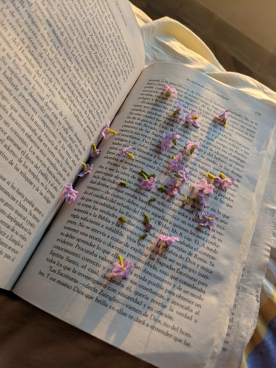 Flowers, Book, Pages, Petals, Literature, Sunlight