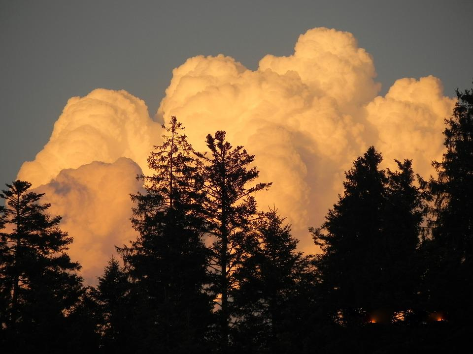 Clouds, In The, Evening, Sunlight