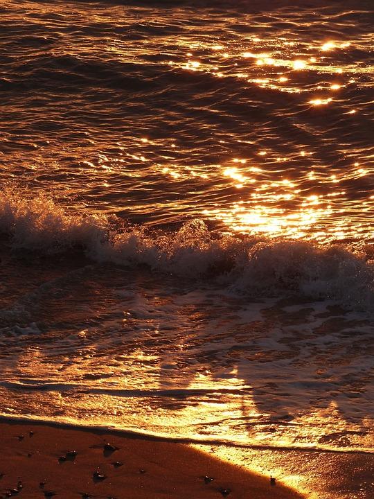 Waves, Beach, Ocean, Sunlight, Reflection, Ripples