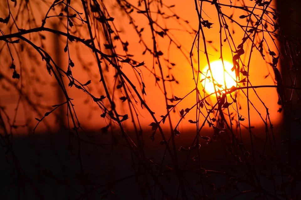 Sunrise, Morning, Sun, Sunlight