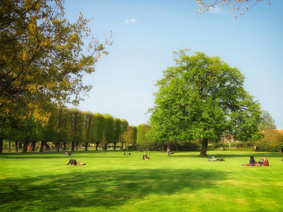Copenhagen, Denmark, Public Park, People, Sunny, Summer