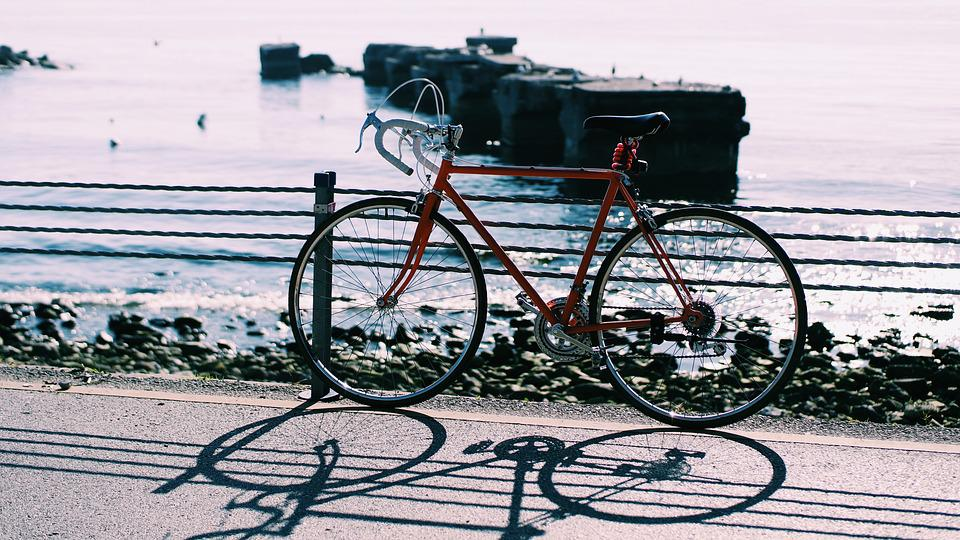 Sea, Sunny, Water, Travel, Bike, Bicycle, Shore, Trip