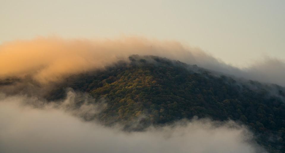 Fog, Autumn, Sunrise, Nature, Landscape, Timber, Mood