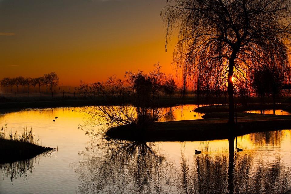 Sunrise, Pond, Truer