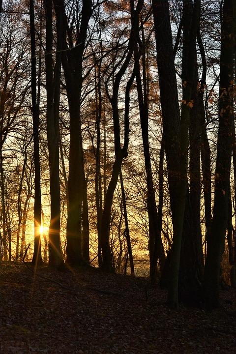 Autumn, Sunset, Cold, Abendstimmung, Evening Sky