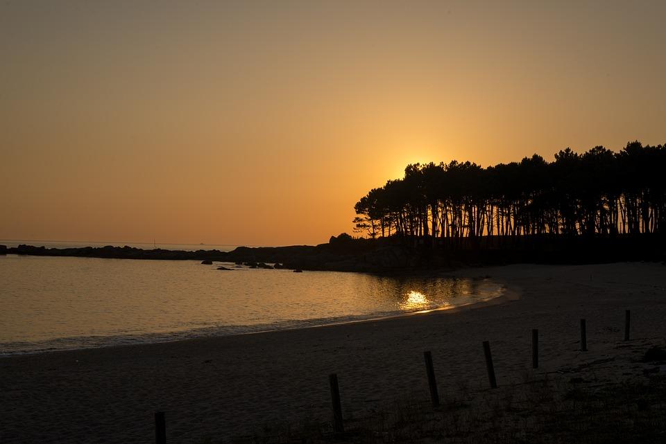 Beach, Sunset, Landscape, Trees, Sun, Silhouette