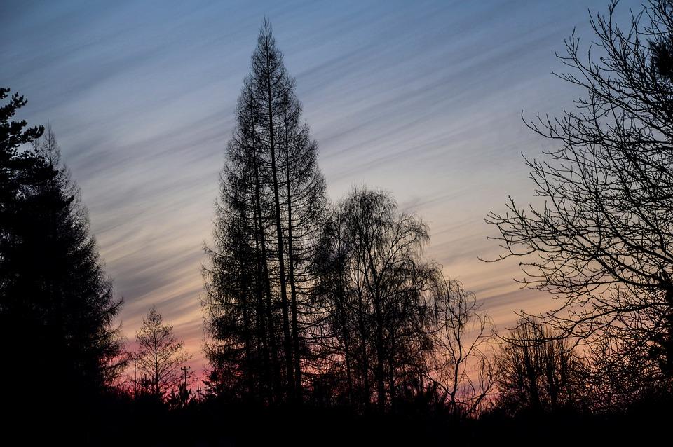 Sunset, Sky, Clouds, West, Sun, Light, The Backlight