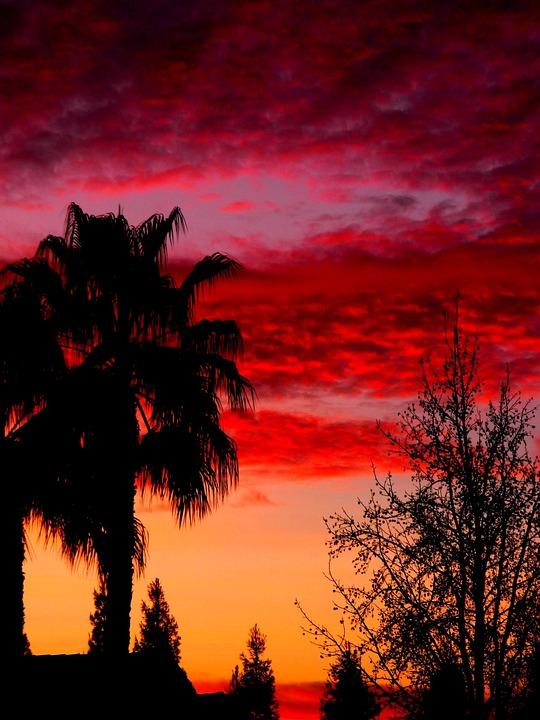 Sky, Sunset, Colors, Pink, Orange, Purple, Warm