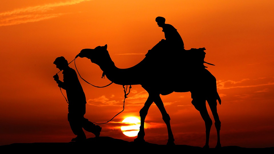 Sunset, Camel, Desert, Silhouettes, People, Camel Ride