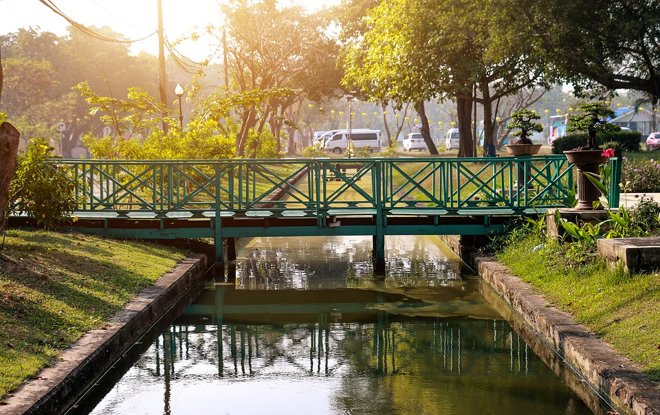 Trees, Shadows, Sunset, Sunrise, Dusk, Lonely, Bridge