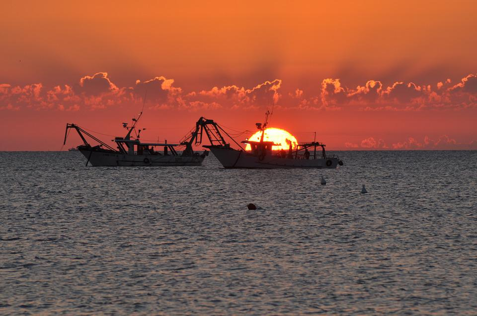 Dawn, Fishing Vessels, Sea, Boats, Boat, Sunset, Fish