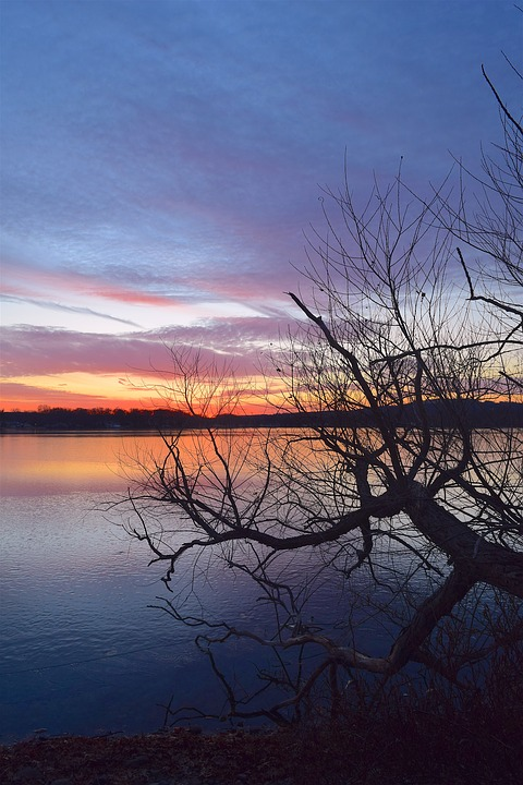 Lake, Sunset, Ice, Clouds, Branches, Nature, Reflection