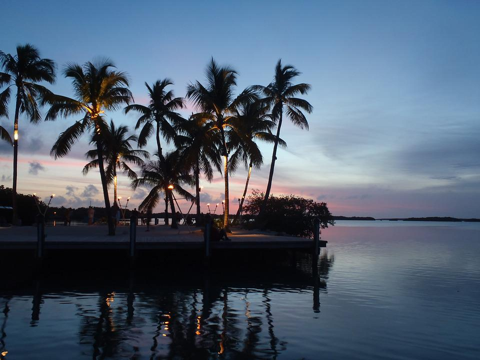 Palm Trees Silhouette Sunset Events Florida Keys