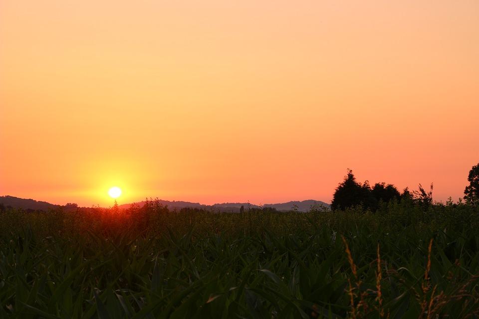 Fields, Sunset, Sky, Twilight, Colors, Landscape, Grass
