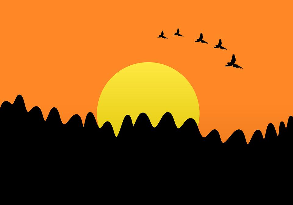 Sunset, Nature, Sun, Birds, Fly, Twilight, Birds Flying