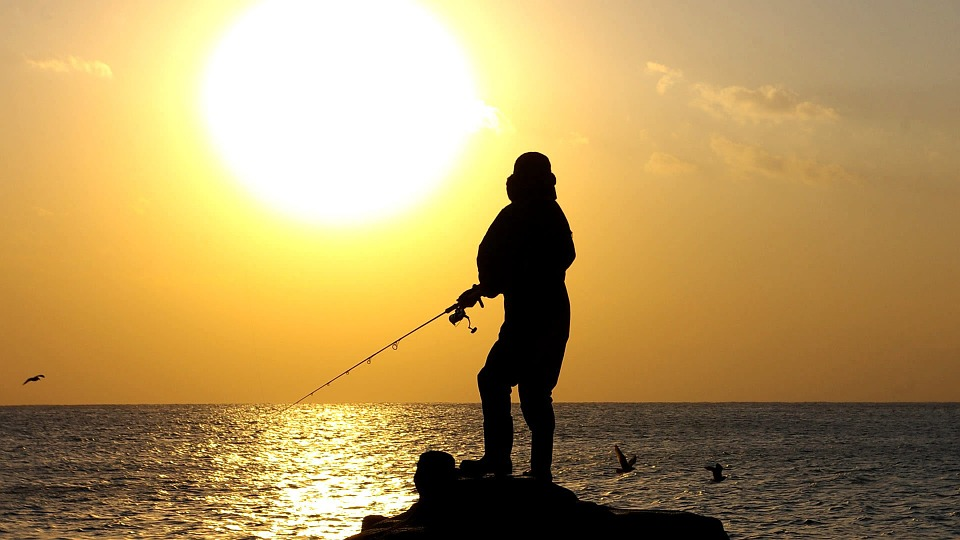 Sunset, Angler, Lake, Nature, Nightfall, Lake Balaton