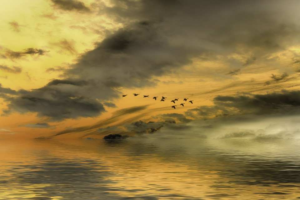 Sunset, Clouds, Sky, Horizon, Silhouette, Orange
