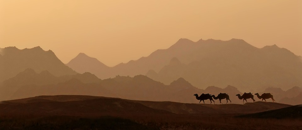 Dawn, Desert, Sunset, Panoramic, Mountain, Landscape