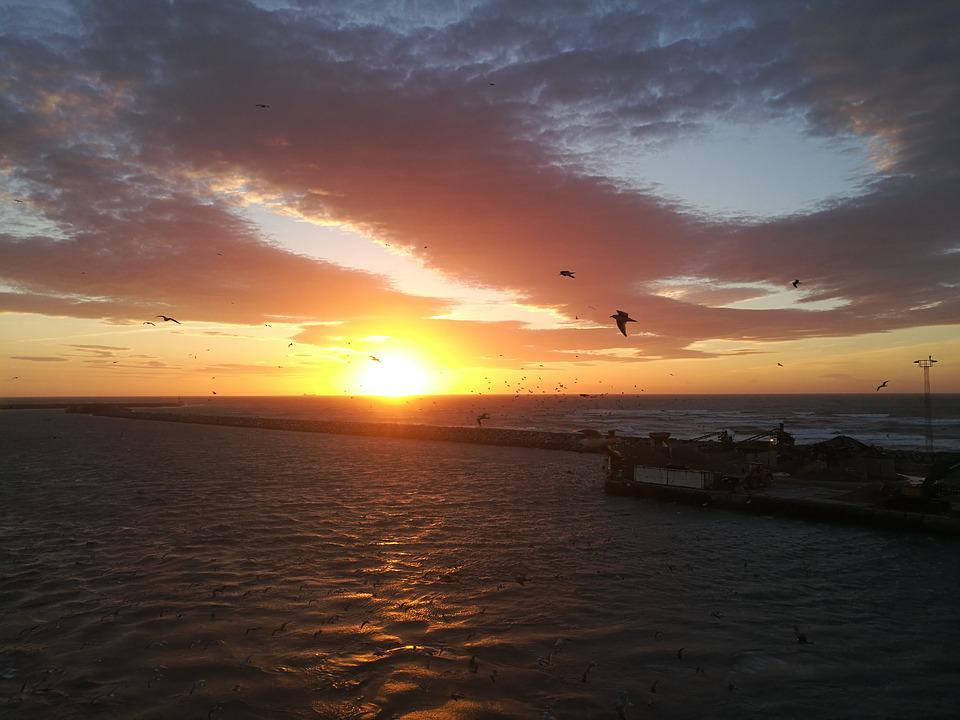 Sunset, Sea, Gulls, Port, Ferry, North Sea, Back Light