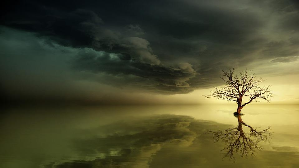 Sea, Sunset, Enchanted, Mirroring, Dawn, Sky, Sun