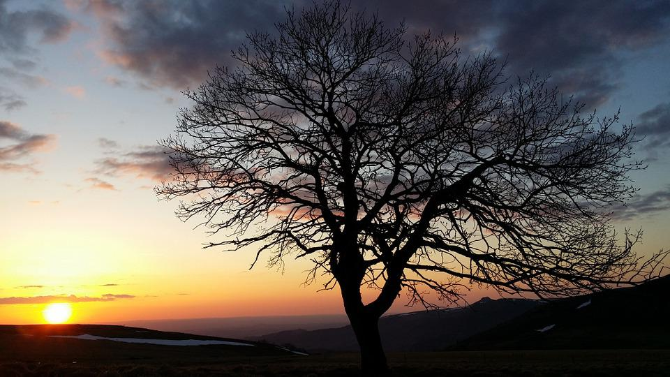 Serenity, Sunset, Auvergne, Sundown