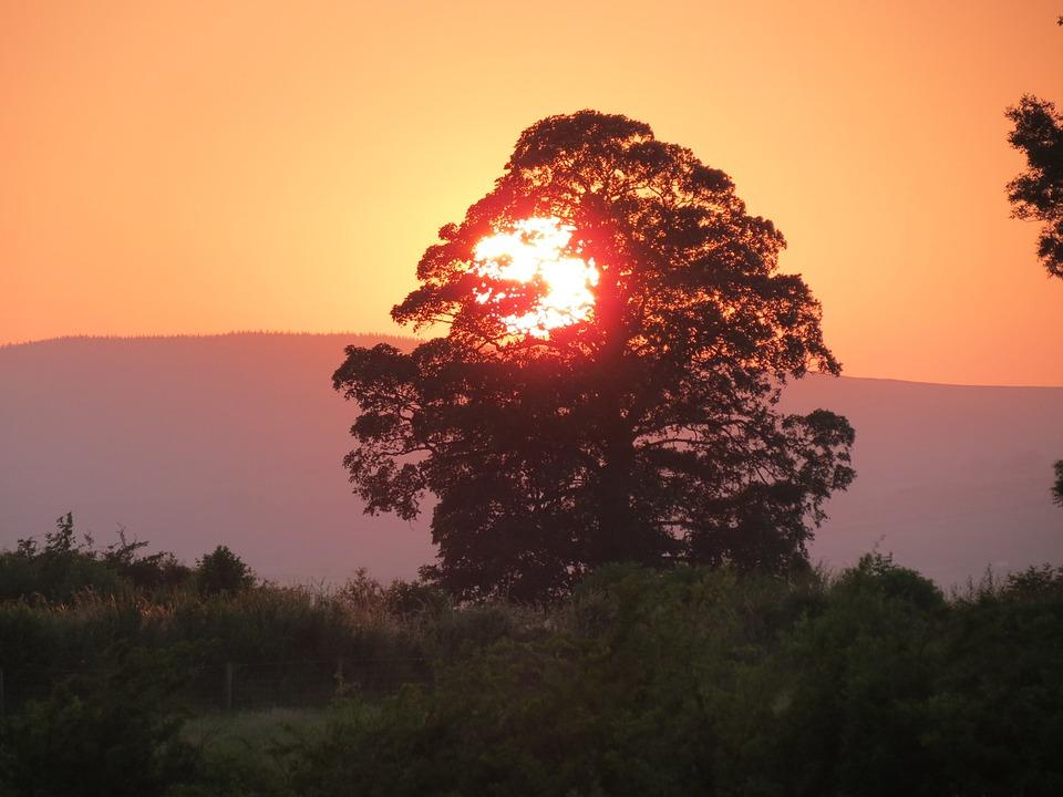 Sunset, Summer Sunset, Summer Evening, Setting Sun