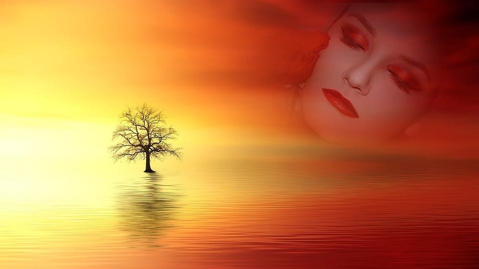 Sunset, Sun, Dawn, Dusk, Nature, Evening, Silhouette