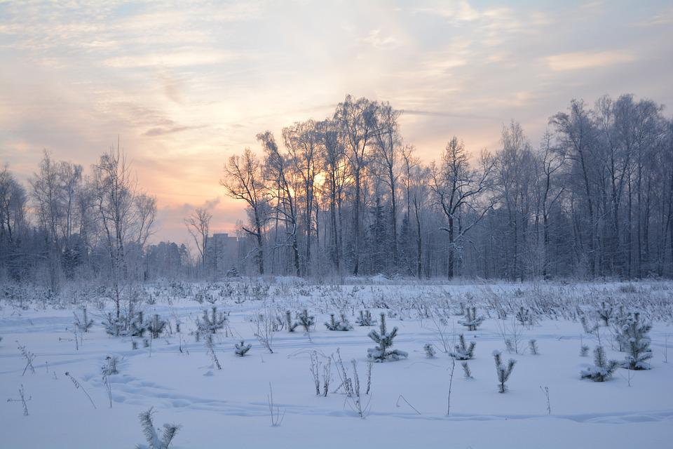 Winter, Nature, Landscape, Russia, Snow, Sunset, Trees