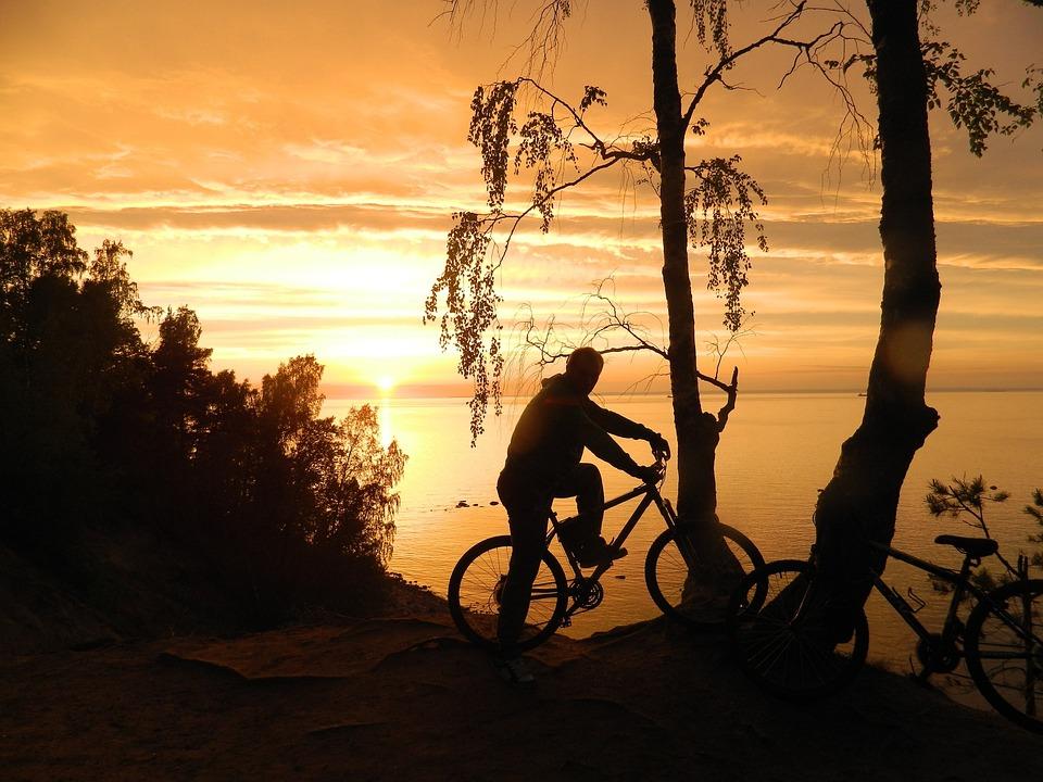 Sunset, Evening, Bike, Sea, Sun, Tree, Stroll, Man