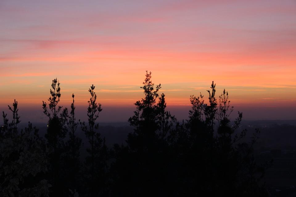 Nature, Sun, Landscape, Sunset, Autumn, Trees, Clouds