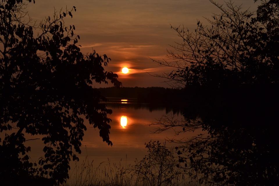 Sunset, Dawn, Tree, Nature