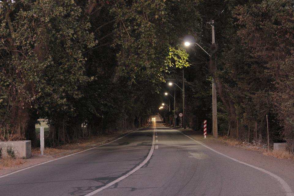 Street, Path, Sunset, Lights, Trees, Tree, Light