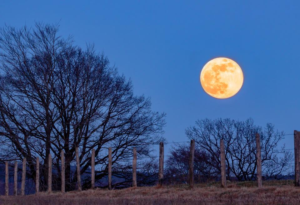 Full Moon, Super Moon, Moon, Blue Hour, Moonlight, Sky