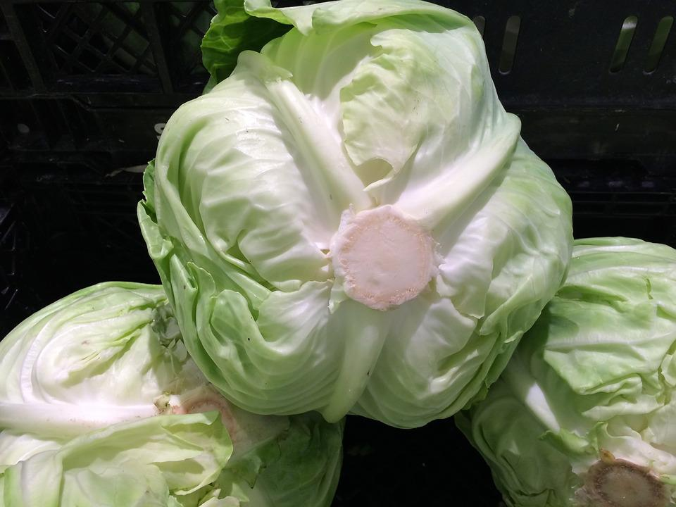 Cabbage, Vegetables, Seiyu Ltd, Living, Supermarket