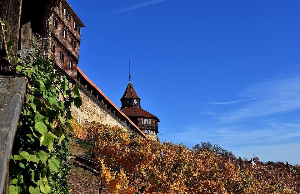 Esslingen, Baden Württemberg, Swabia, Wine, Vines