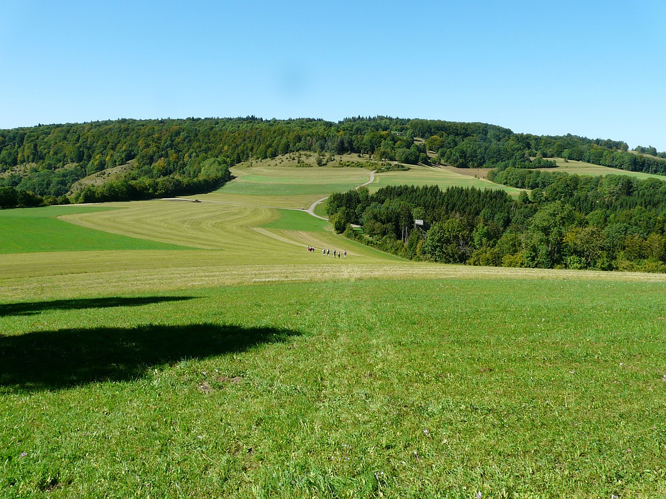 Hiking, Hike, Fields, Reported, Forests, Swabian Alb