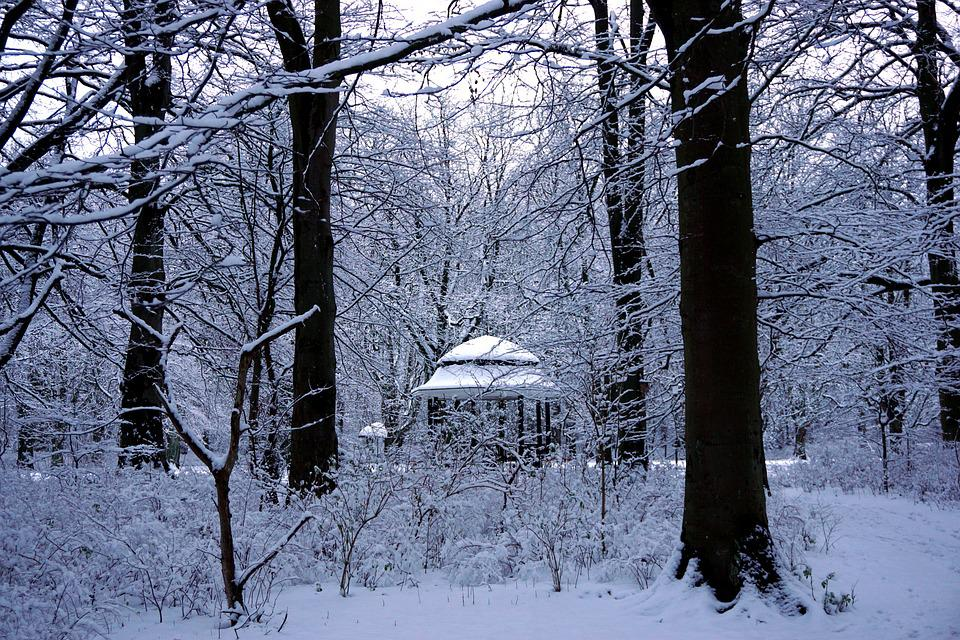 Malmö, Winter, Sweden, Outdoor, Skåne, Christmas