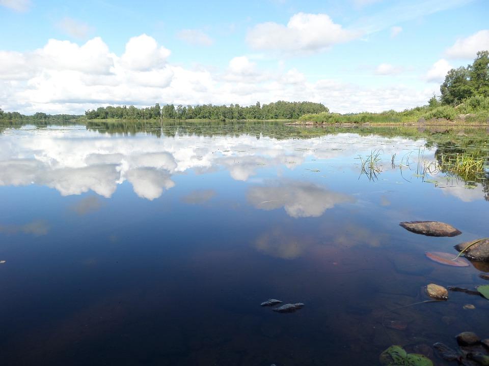 Reflection, Lake, Landscape, Calm, Summer, Sweden