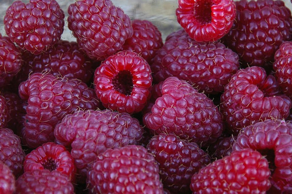 Summer, Raspberries, Fruits, Red, Close, Ripe, Sweet