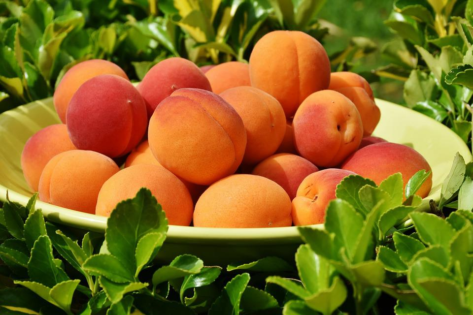 Apricots, Apricot, Fruit, Fruits, Sweet, Healthy