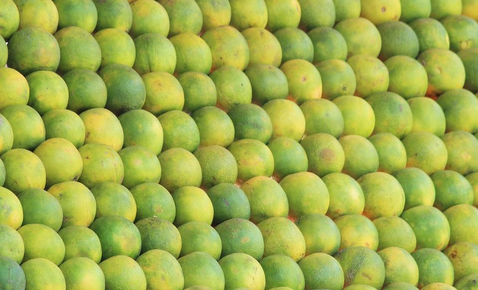 Mausami, Sweet Lemon, Fruit