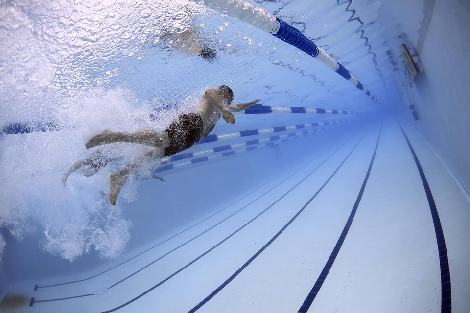 Swimmers, Swimming, Race, Competition, Pool, Water
