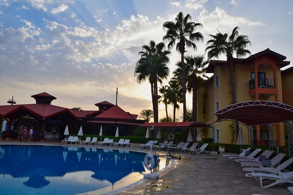 Vacations, Pool, Palm Trees, Swimming Pool, Swim