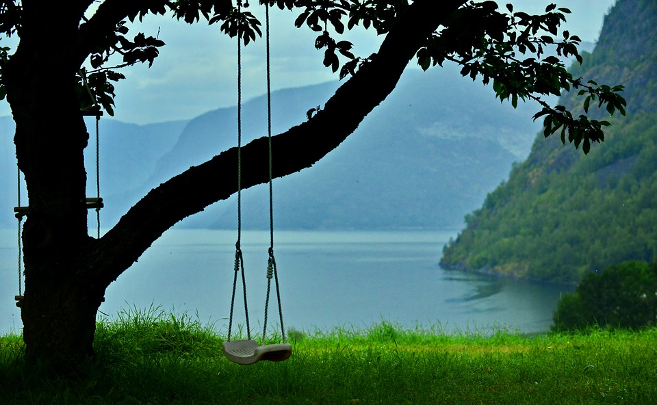 Swing, The Old Tree, Mountain, Lake