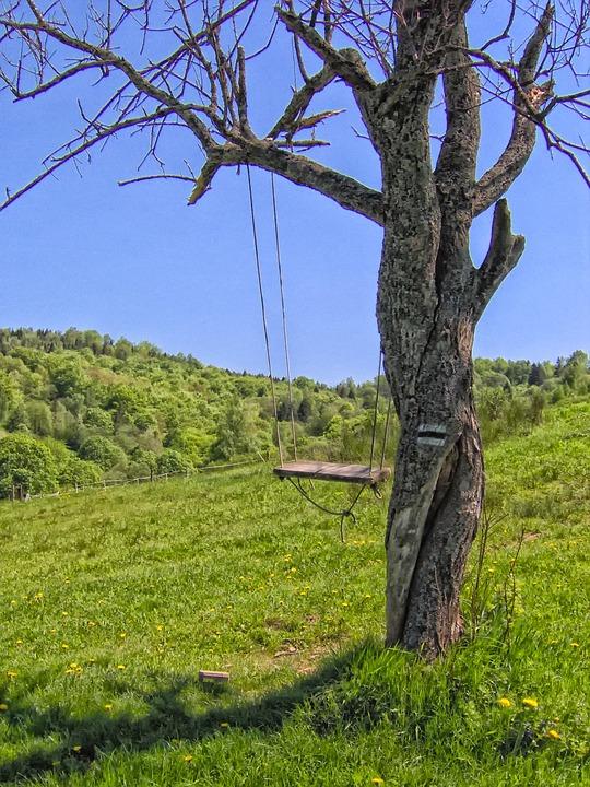 Tree, Swing, Scenic, Summer, Landscape, Nostalgia, Hdr