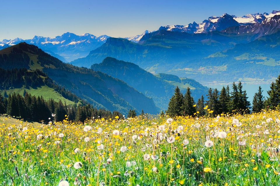 Free Photo Swiss Alps Summer Switzerland Wanderer Alpine